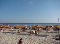 Пляж (плавают дельфины)